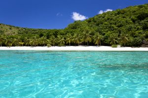 Pristine BVI Caribbean island with white sand beach and palm trees.  Crystal clear blue water in a bay on the British Virgin Islands