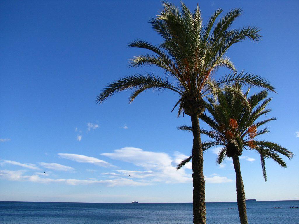 Mediterranean beach and blue water