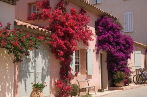 French-Riviera-Porquerolles